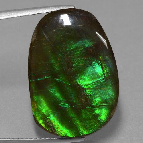 16.2ct Fancy Cabochon Multicolor Ammolite Gem (ID: 453595)
