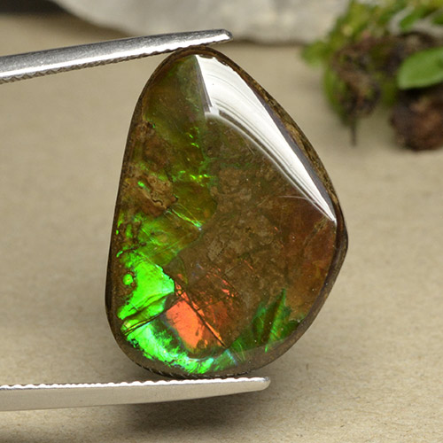 15ct Fancy Cabochon Multicolor Ammolite Gem (ID: 494099)