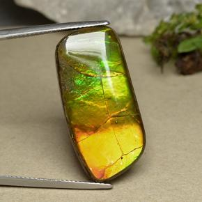 Multicolor Ammolite Gem - 21.2ct Fancy Cabochon (ID: 494100)