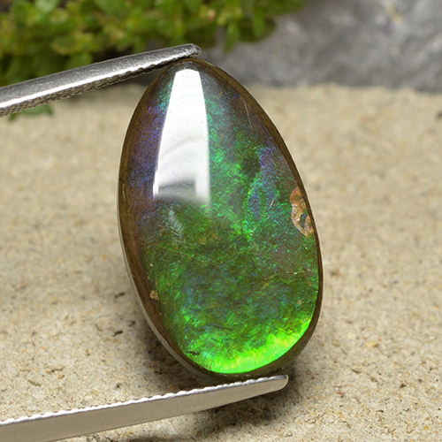 Multicolor Ammolite Gem - 10.3ct Pear Cabochon (ID: 494350)