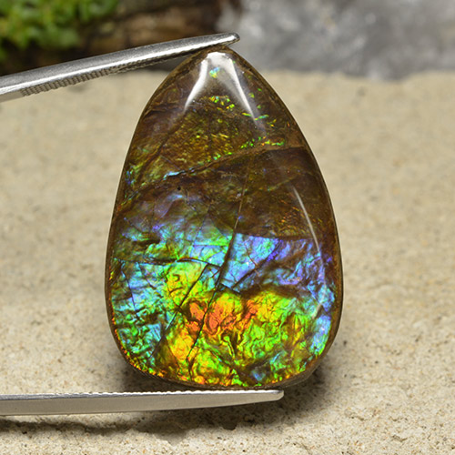 Multicolor Ammolite Gem - 24.5ct Fancy Cabochon (ID: 494359)