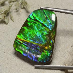 23.2ct Fancy Cabochon Multicolor Ammolite Gem (ID: 494367)