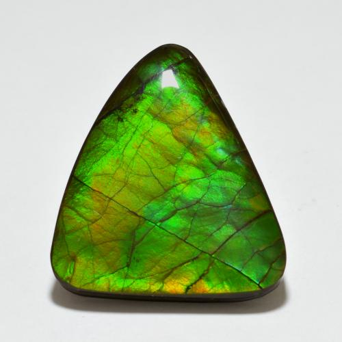 Multicolor Ammolite Gem - 20.4ct Shark Fin Cabochon (ID: 494368)