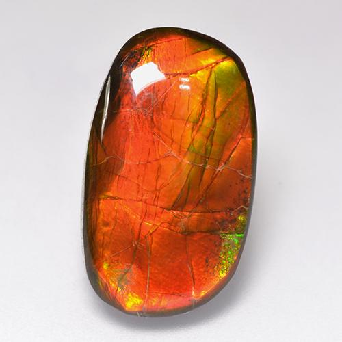 Multicolor Ammolite Gem - 11.9ct Fancy Cabochon (ID: 520785)