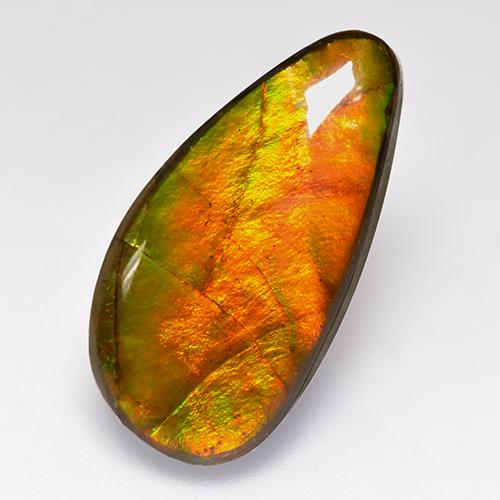 10.1ct Fancy Cabochon Multicolor Ammolite Gem (ID: 520787)