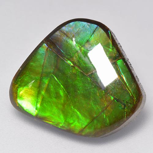 9.8ct Fancy Cabochon Multicolor Ammolite Gem (ID: 520789)