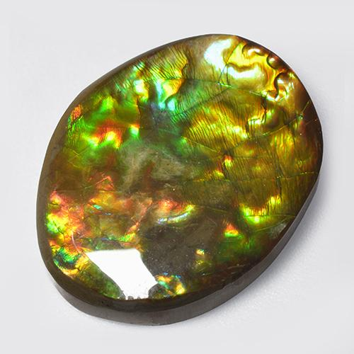 14.7ct Fancy Cabochon Multicolor Ammolite Gem (ID: 520790)