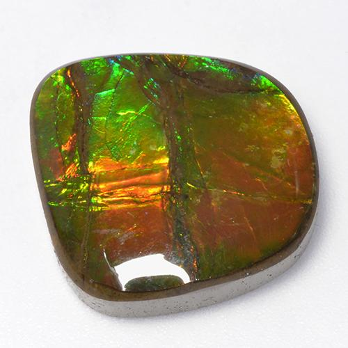 13.1ct Fancy Cabochon Multicolor Ammolite Gem (ID: 520796)