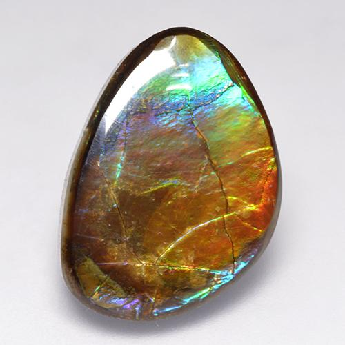 Multicolor Ammolite Gem - 14.5ct Fancy Cabochon (ID: 520801)