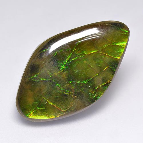 14.1ct Fancy Cabochon Multicolor Ammolite Gem (ID: 520853)