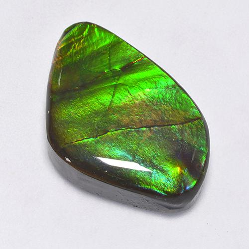 22.3ct Fancy Cabochon Multicolor Ammolite Gem (ID: 520854)