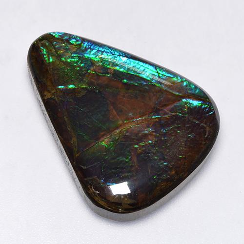 17.3ct Fancy Cabochon Multicolor Ammolite Gem (ID: 520855)