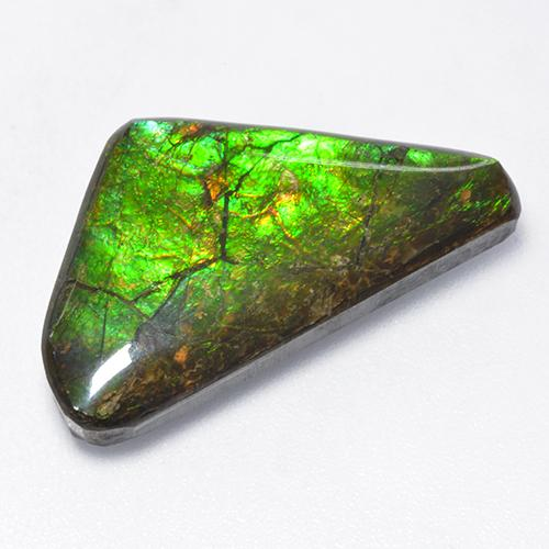 10.4ct Fancy Cabochon Multicolor Ammolite Gem (ID: 520861)