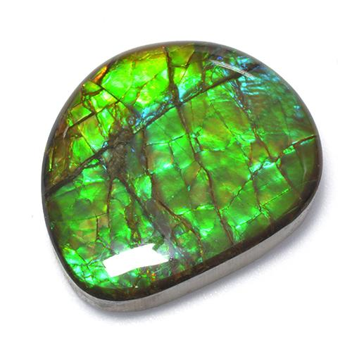 18.6ct Fancy Cabochon Multicolor Ammolite Gem (ID: 520863)