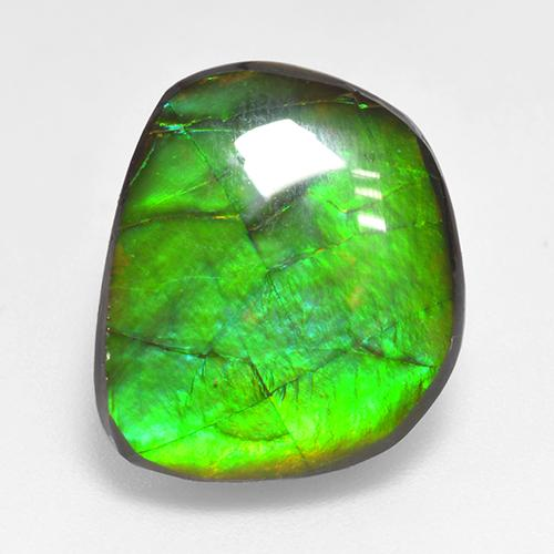 Multicolor Ammolite Gem - 10.6ct Fancy Cabochon (ID: 520864)