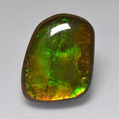 10.8ct Fancy Cabochon Multicolor Ammolite Gem (ID: 520992)