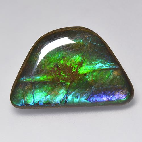 15.9ct Fancy Cabochon Multicolor Ammolite Gem (ID: 521251)