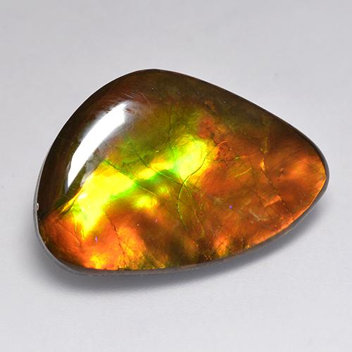 Multicolor Ammolite Gem - 20.3ct Fancy Cabochon (ID: 521253)