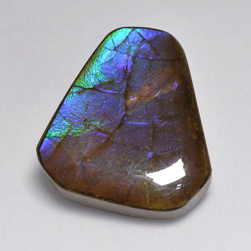 Multicolor Ammolite Gem - 14ct Fancy Cabochon (ID: 521254)