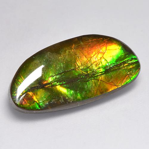 11.6ct Fancy Cabochon Multicolor Ammolite Gem (ID: 521255)