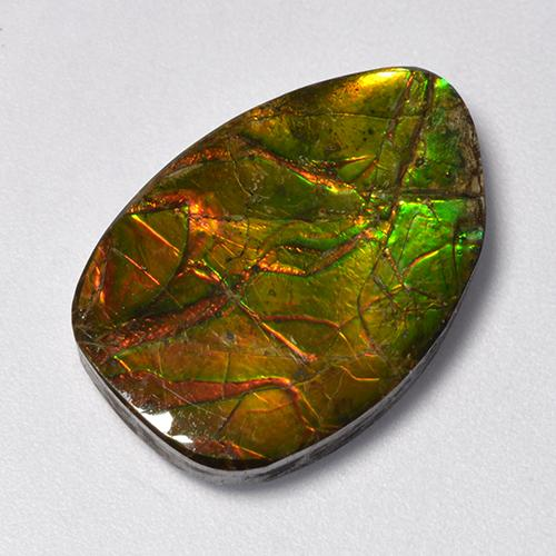 11.1ct Fancy Cabochon Multicolor Ammolite Gem (ID: 521258)