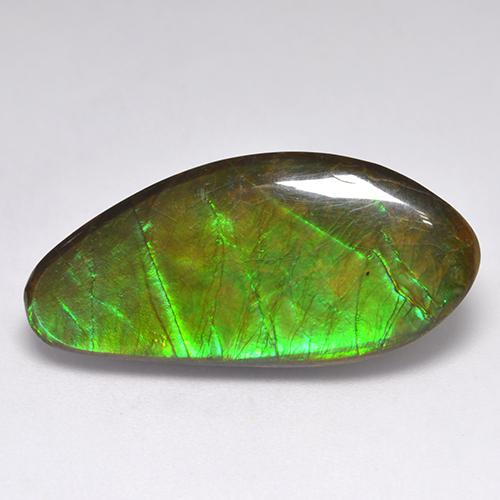 15.8ct Fancy Cabochon Multicolor Ammolite Gem (ID: 521310)