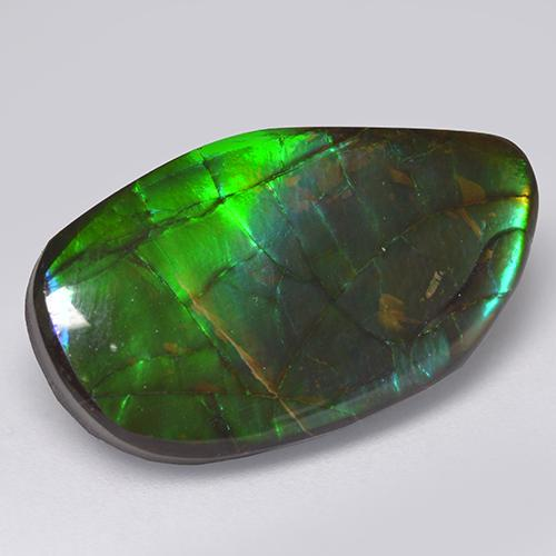 13.7ct Fancy Cabochon Multicolor Ammolite Gem (ID: 521314)