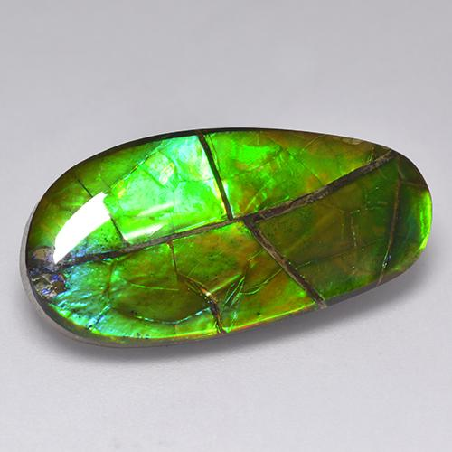 17.1ct Fancy Cabochon Multicolor Ammolite Gem (ID: 521315)