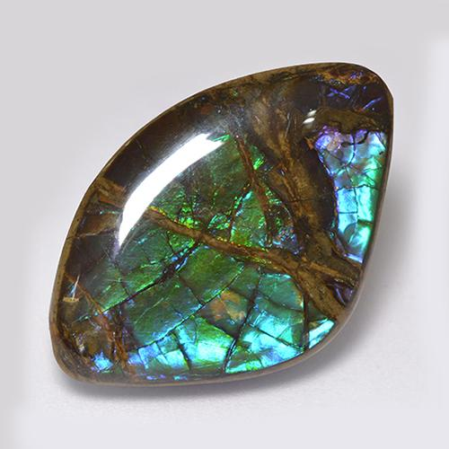 18.1ct Fancy Cabochon Multicolor Ammolite Gem (ID: 521317)