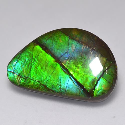 15.8ct Fancy Cabochon Multicolor Ammolite Gem (ID: 521318)