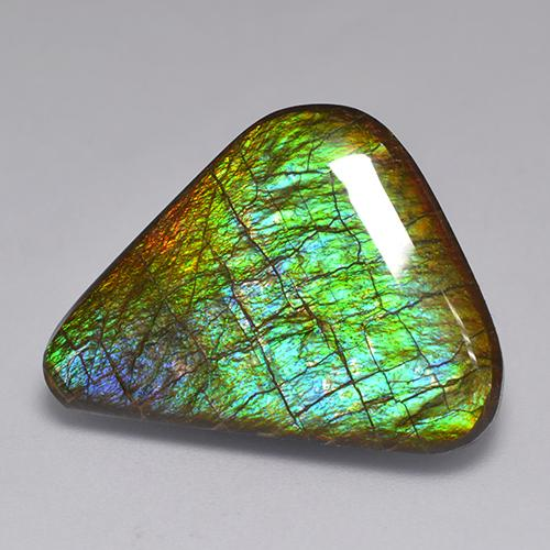 19.8ct Fancy Cabochon Multicolor Ammolite Gem (ID: 521319)