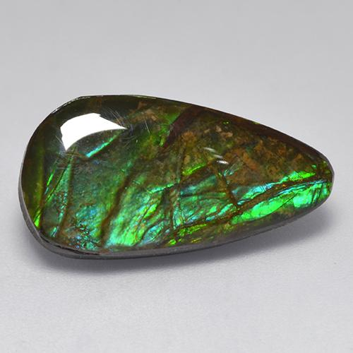 10ct Fancy Cabochon Multicolor Ammolite Gem (ID: 521585)