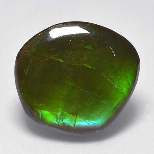 Multicolor Ammolite Gem - 10.3ct Fancy Cabochon (ID: 521586)