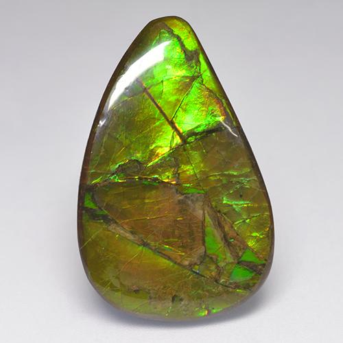 23.1ct Fancy Cabochon Multicolor Ammolite Gem (ID: 522365)