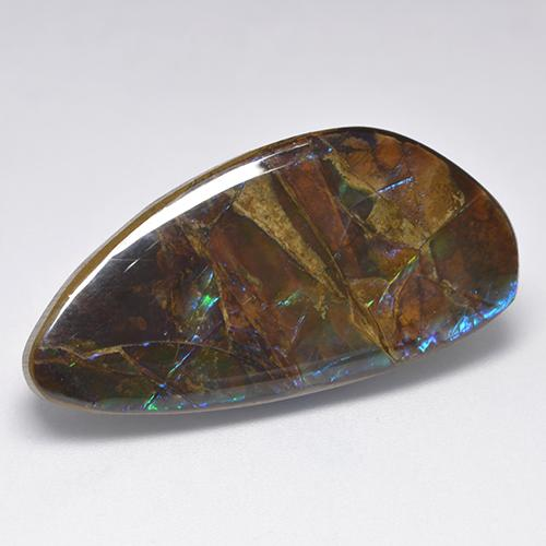 19.9ct Fancy Cabochon Multicolor Ammolite Gem (ID: 522371)