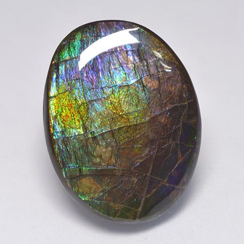 Multicolor Ammolite Gem - 19.4ct Fancy Cabochon (ID: 522532)