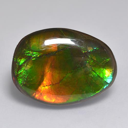 14.9ct Fancy Cabochon Multicolor Ammolite Gem (ID: 523380)