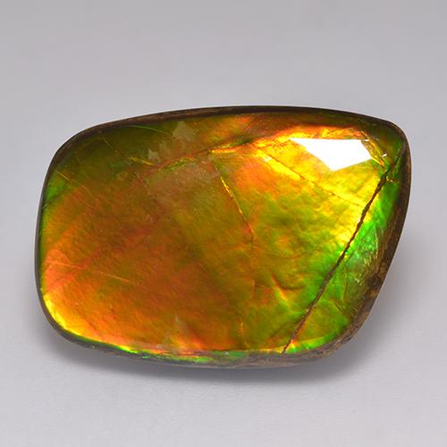 21.6ct Fancy Cabochon Multicolor Ammolite Gem (ID: 523381)