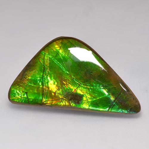 17.7ct Fancy Cabochon Multicolor Ammolite Gem (ID: 523387)