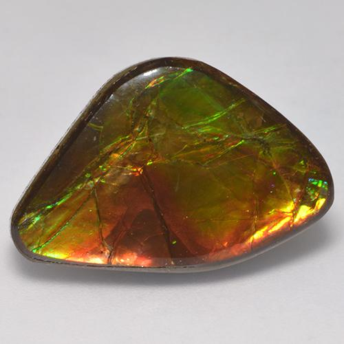 14.2ct Fancy Cabochon Multicolor Ammolite Gem (ID: 523394)