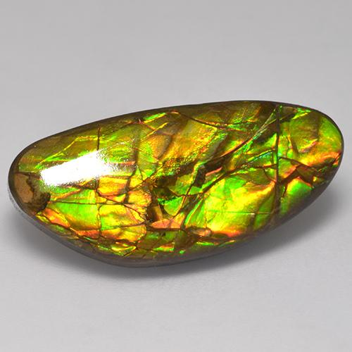 17.6ct Fancy Cabochon Multicolor Ammolite Gem (ID: 523396)