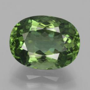 Green Apatite Gem - 5.8ct Oval Facet (ID: 366099)