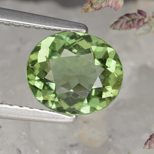 thumb image of 1.4ct Oval Facet Green Apatite (ID: 368540)