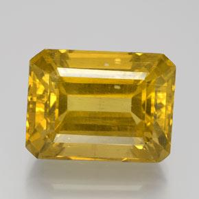 Golden Apatite Gem - 20.4ct Octagon Facet (ID: 384010)