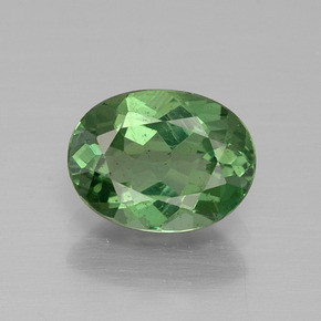 Cool Green Apatite Gem - 1.2ct Ovale sfaccettato (ID: 392752)