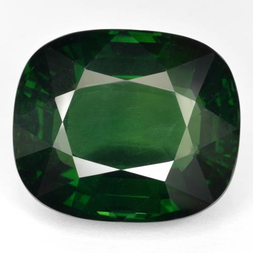 46.2ct Cushion-Cut Green Apatite Gem (ID: 429703)