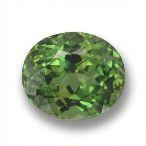 Deep Forest Green Apatite Gem - 3.2ct Ovale sfaccettato (ID: 460705)