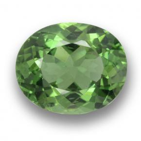 Green Apatite Gem - 2.1ct Oval Facet (ID: 460866)