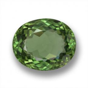 Green Apatite Gem - 2.4ct Oval Facet (ID: 461318)
