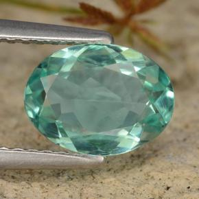 Green Blue Apatite Gem - 1.5ct Oval Facet (ID: 475395)